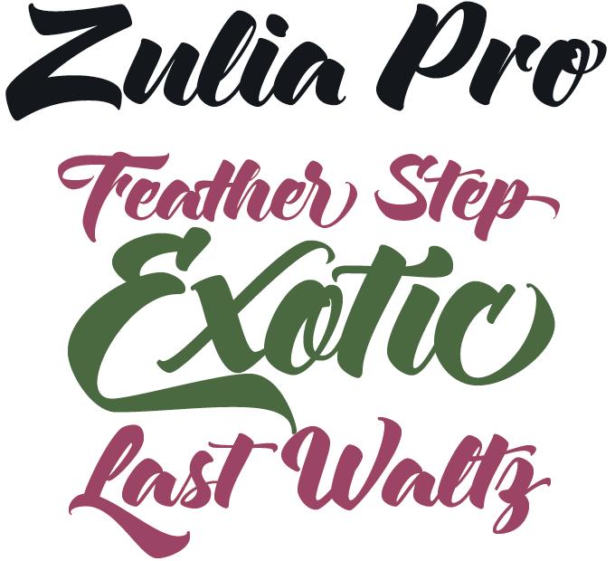 Myfonts Rising Star September 2013 - Zulia Pro font sample