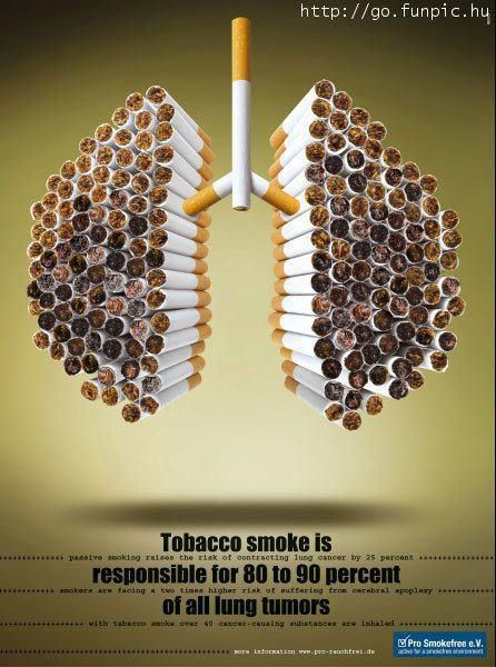 Tobacco smoke responsible for large % of all Lung tumors