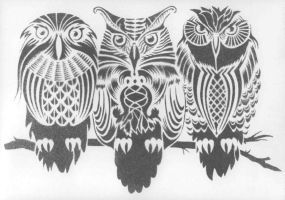 owls by SHVEPSEG