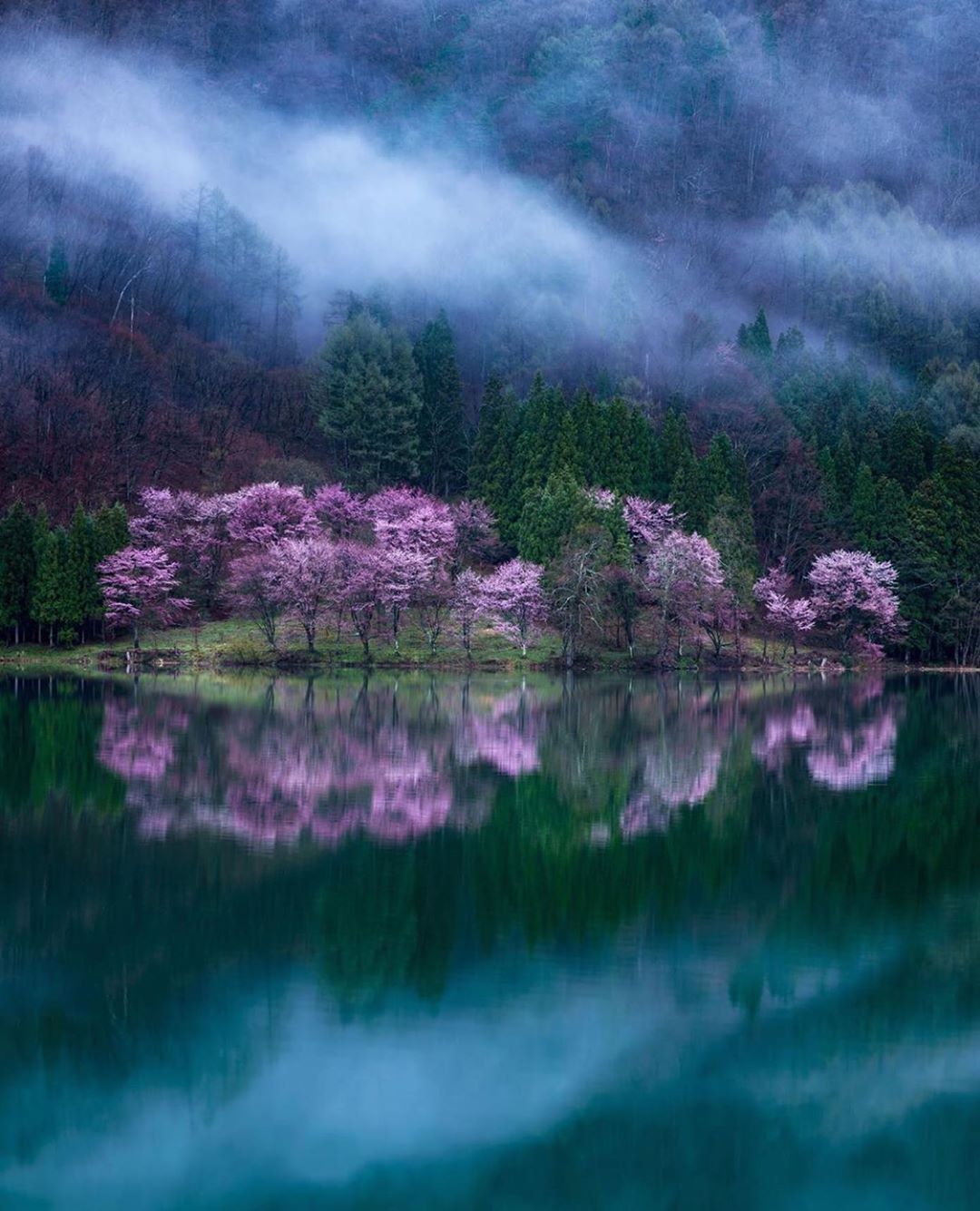 Nagano Prefecture Japan Photo Onotch X Nature Photographs National Geographic Photography Nature Photography