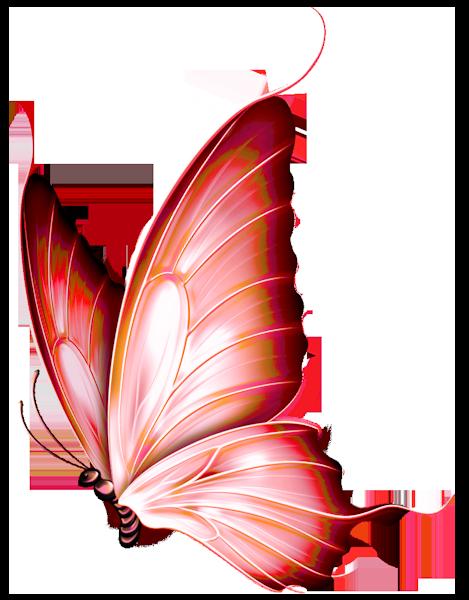 dieren painting poser coocie png tube pinterest butterfly rh pinterest nz