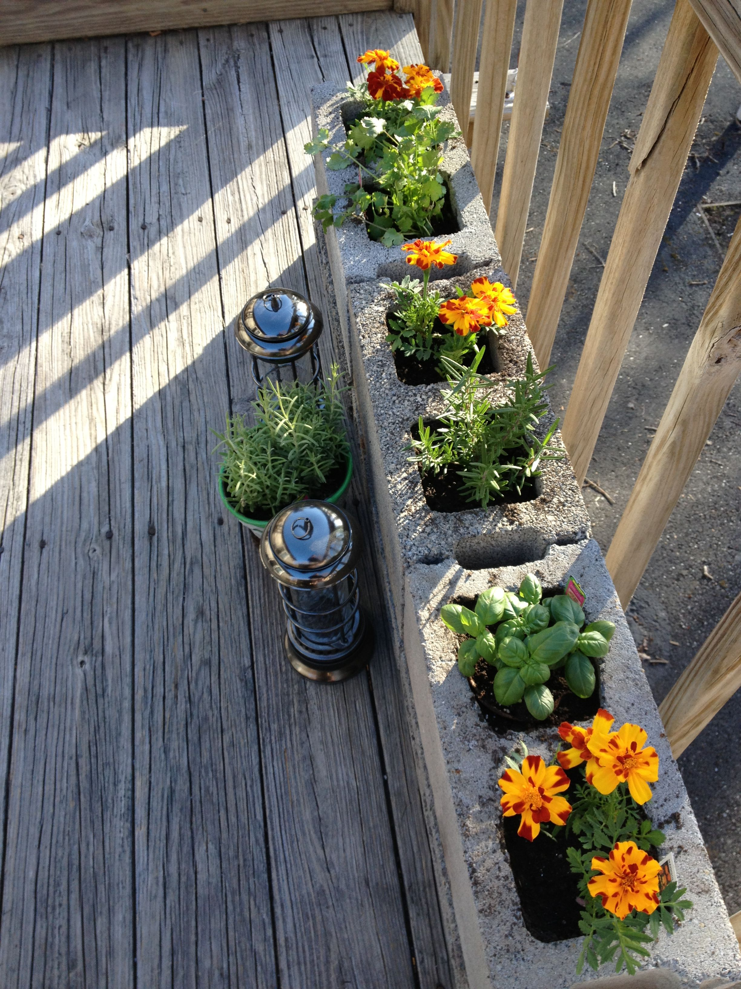 Our small herb garden on the deck. | Gardens... | Small herb gardens ...