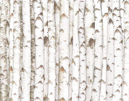 Details Zu FotoTapete NoYK15 Birkenwand Foto Tapeten