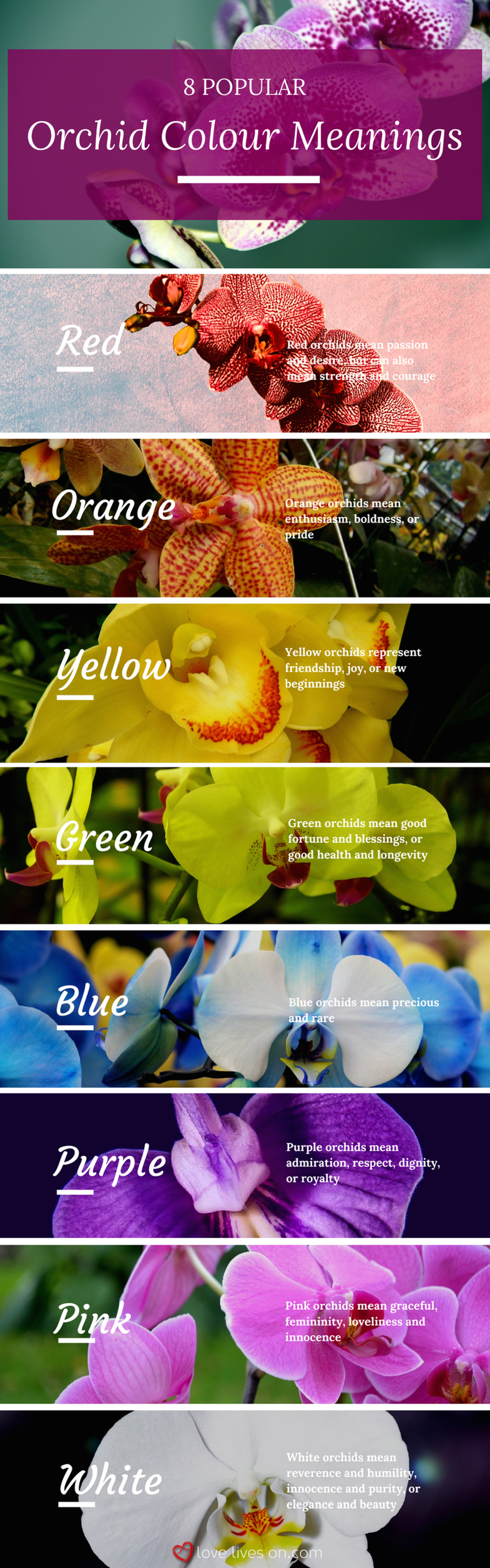 best funeral flowers quotes pinterest funeral arrangements