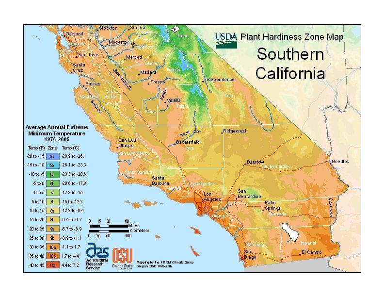 The best memorial tree urns for your state southern california new plant hardiness zone map escondido publicscrutiny Gallery