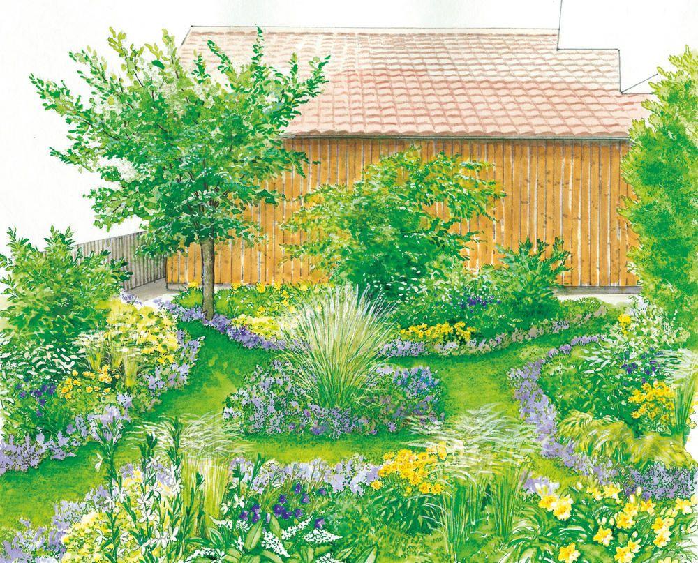 Bunter Rahmen für den Rasen | Grüner rasen, Kletterpflanzen und Rasen