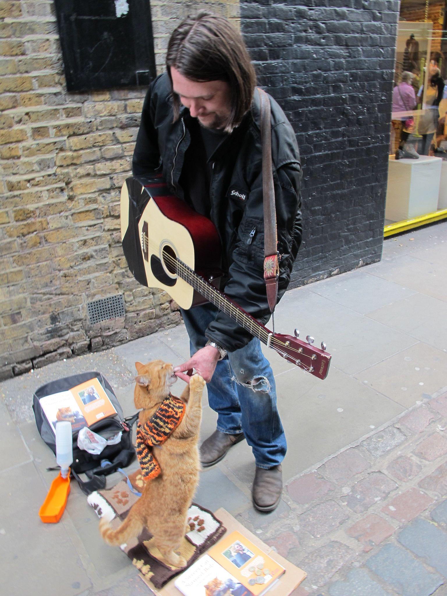 Bob the cat in Covent Garden cats Street cat bob, A