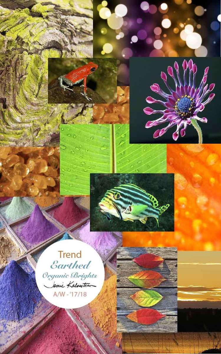 Trend A/W - '17/18 - Earthed Organic Brights | Mood Boards ...