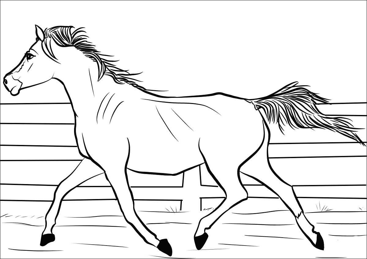 Animals Coloring Pages Horses Coloring Pages With Images