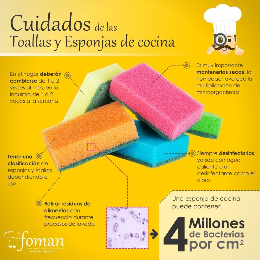 Qu tan durables y limpias son tus esponjas de cocina for Trucos de cocina curiosos