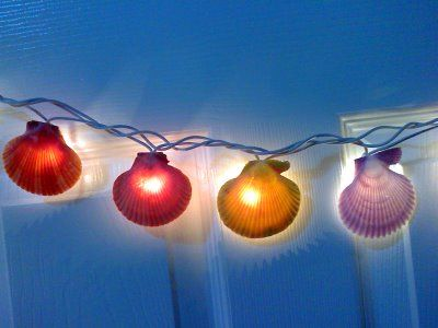 by the seashore diy tuesday decorative lights easy project made by gluing shells to