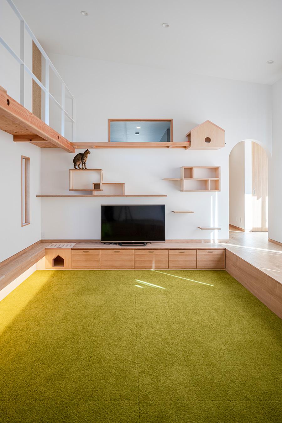 猫好き建築家が提案人もペットも幸せになる猫と暮らすアイデア Tokosie ー トコシエ 猫と暮らす マイホーム 間取り ねこ インテリア