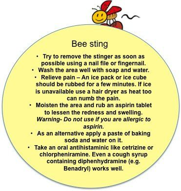First Aid Tips: What to do in case of bee stings, minor burns and other emergencies