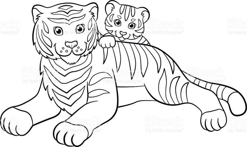 Mother And Baby Animal Colouring Pages In 2019 Mother Baby