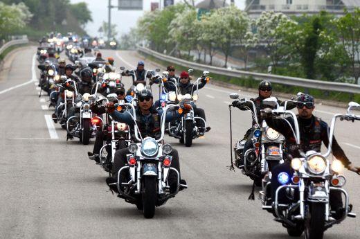 Harley Davidson Korea Luv The Apes Harley Harley Davidson Biker Style