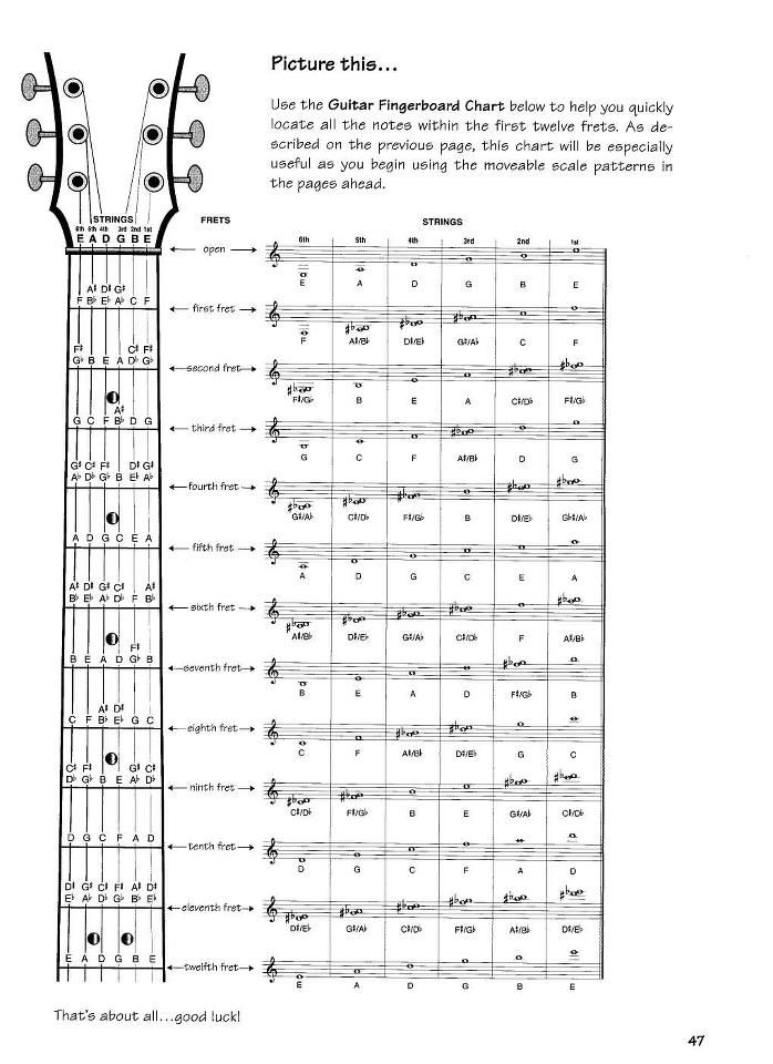 Notes Guitar Fretboard Chart  Guitar  Notes On The Fret Board