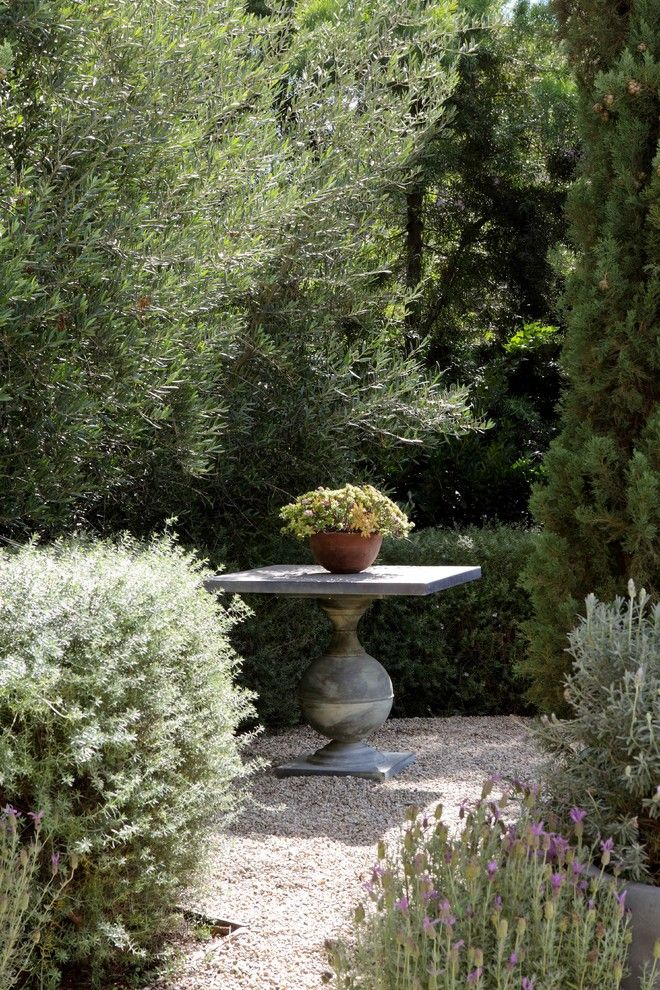 Everything You Need To Know Regarding Container Gardening