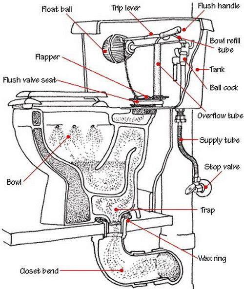 toilet diagram parts identification