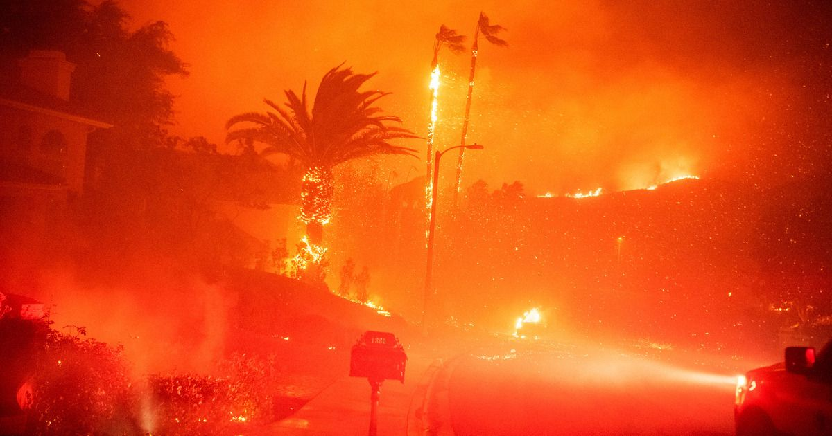 Los Angeles Fire Season Is Beginning Again And It Will Never End World Water Day Los Angeles National Doctors Day