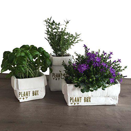3er Set Blumentöpfe für Kräuter/Blumen