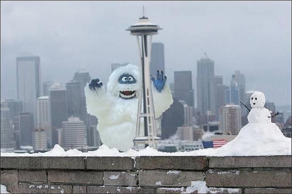 Renamed Seattle Snow Needle For Today Seattle Photos Seattle