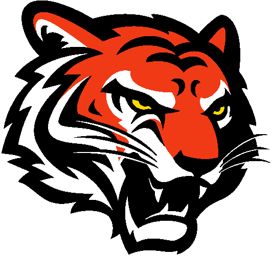 Cincinnati Bengals Primary Logo Illustration Tiger Logo Illustration Design