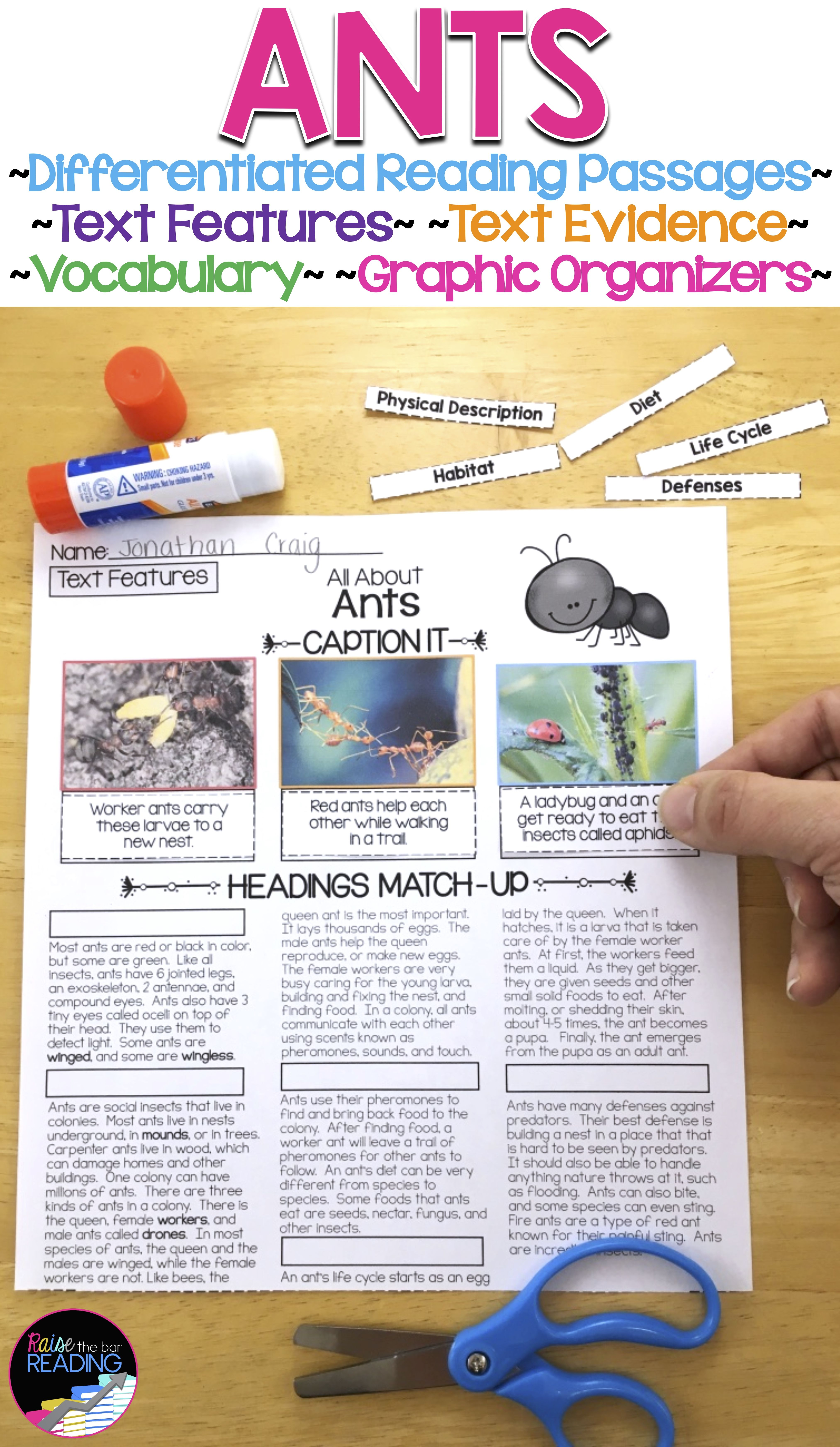 Ants Differentiated Passages With Vocabulary And Comprehension Activities Differentiated Reading Passages Reading Passages Teaching Third Grade Reading [ 6975 x 4050 Pixel ]