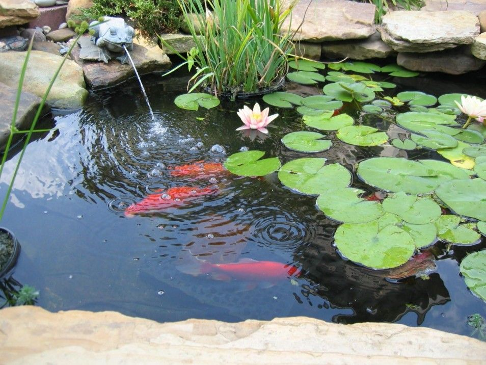 Pretty And Small Backyard Fish Pond Ideas At Decor Landscape Garden ...