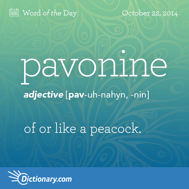 Pavonine - of or like a peacock  | ♥ Logophile ♥ | Foreign words