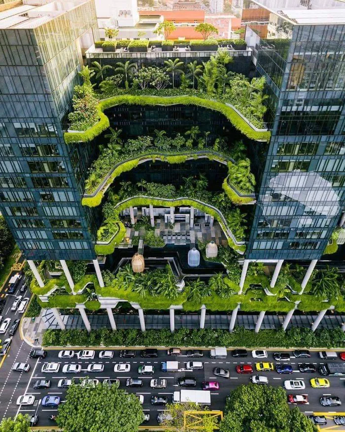 Economic Building In Singapore First To Produce It S Own