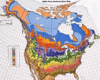 0f23413f6a9e4fa3924d52ea26a81f0b - What Gardening Zone Is North Idaho