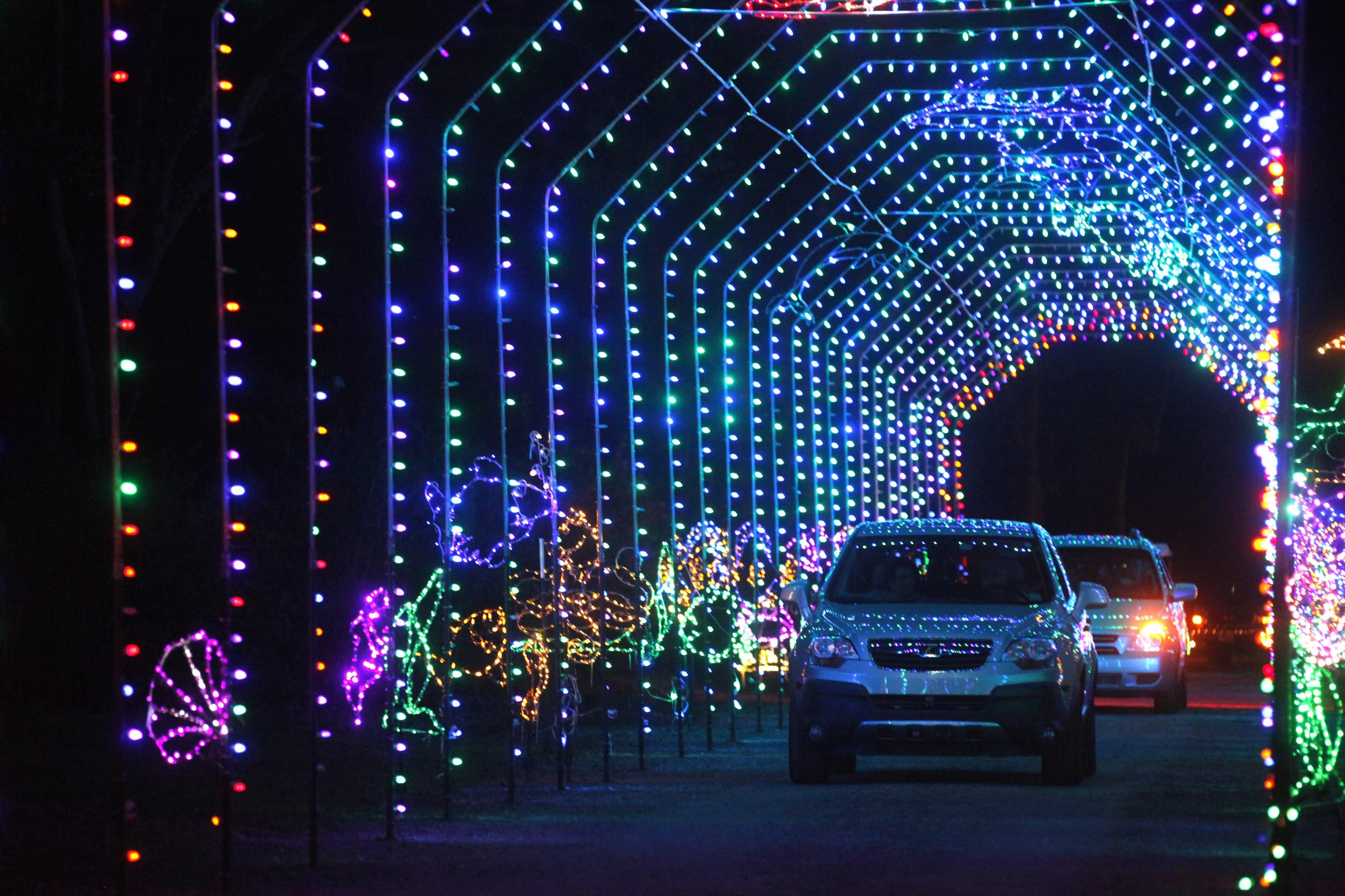 Cars ride through a tunnel of Christmas lights at the