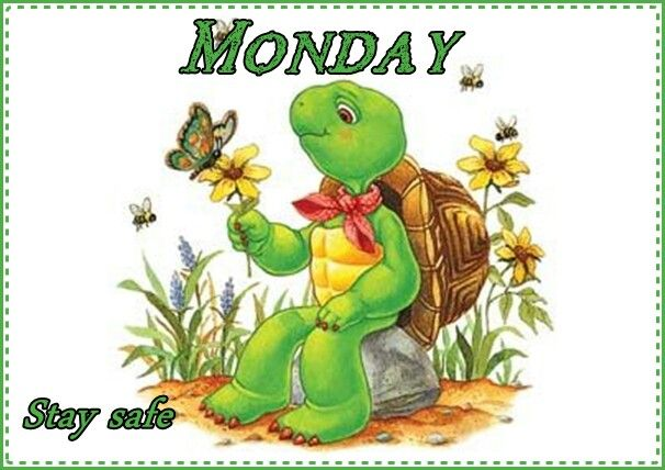 Monday | Free coloring pictures, Franklin the turtle ...