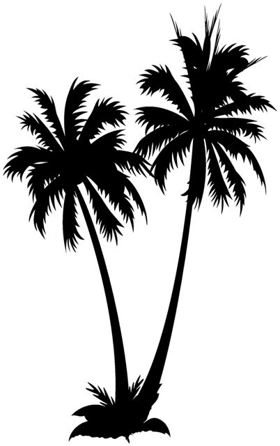 Photos palmier design palmier dessin palmier dessin et tatouage - Dessin palmier ...