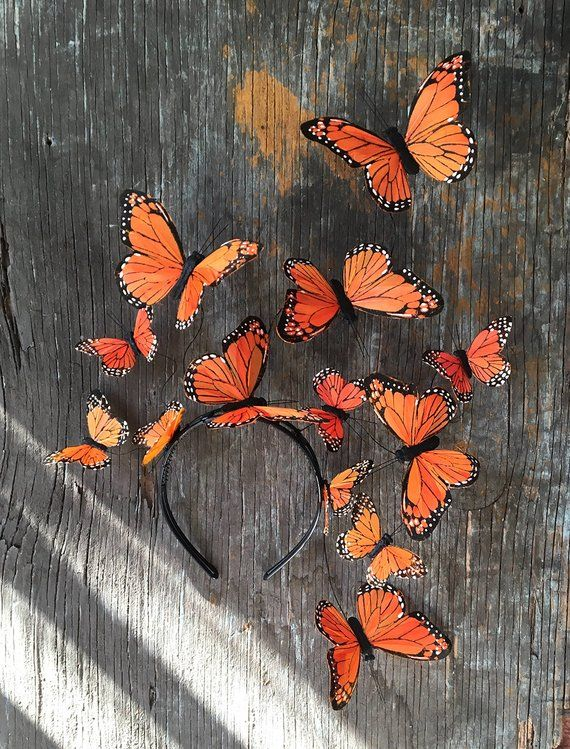 Monarch Butterfly Costume Fascinator Headpiece
