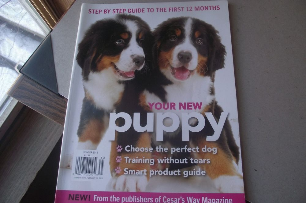 Your New Puppy Winter 2013 Perfect Dog Training Without Tears 12 Month Guide Mag