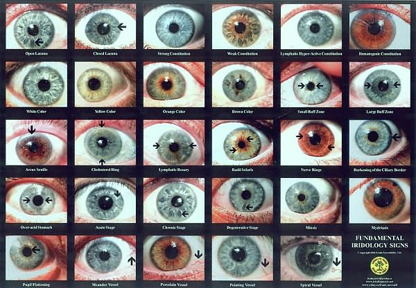 Human Eye Color Chart Go Back Gallery For Natural Eye Colors