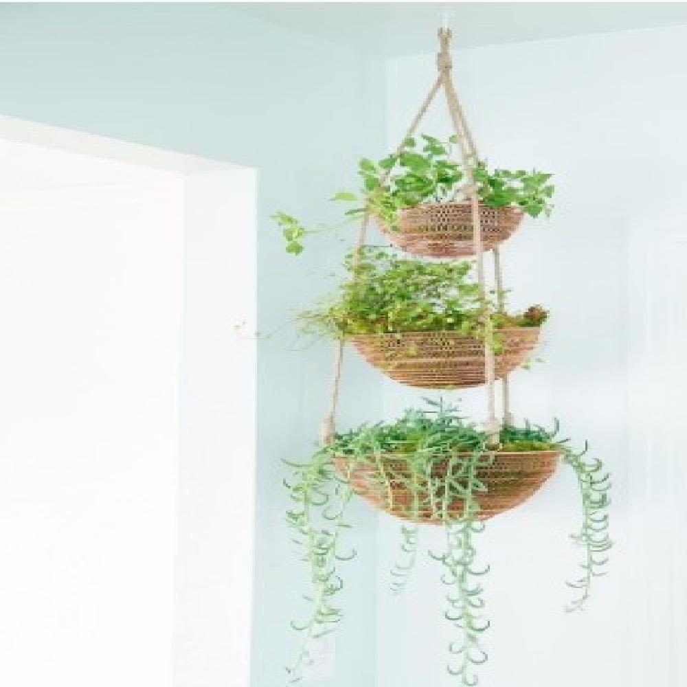 3 Tier Copper Wire Storage Kitchen Organizer Hanging Fruits Vegetables Baskets Foxrun Hanging Plants Diy Hanging Planters Indoor Hanging Plants Indoor