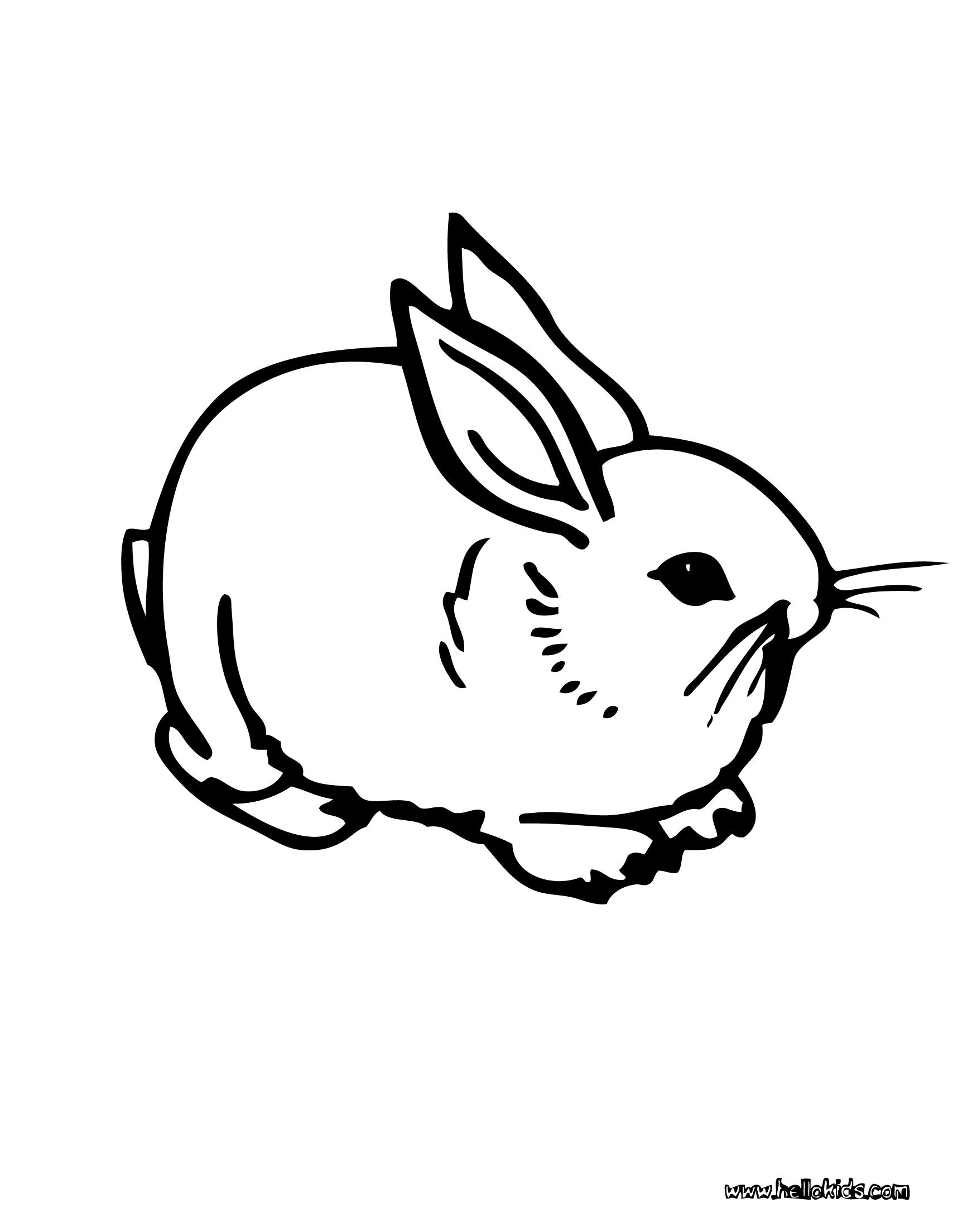 Domestic Rabbit coloring page. Enjoy the wonderful world of coloring ...