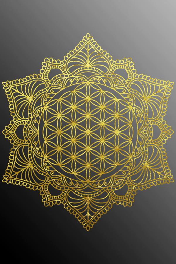 Fleurette De Vie Mandala Yoga Goa Stylisme Quand Une Chemisette D Tirage Mandala Design Geometric Mandala Mandala Design Art