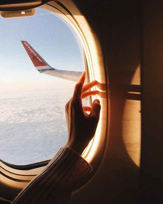 """Лара, любовь, природа 🌲's Instagram photo: """"S U N"""