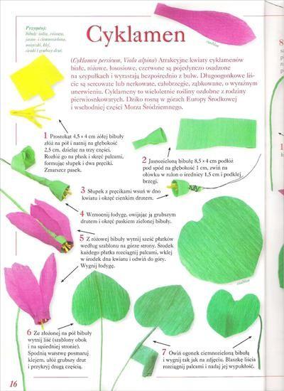 Kwiaty Z Bibuly Bibula Halszka64 Chomikuj Pl Strona 3 Flores