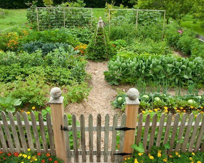 Traditional Vegetable Garden Patio Landscape Vanessa Pinterest - Home-vegetable-garden-design
