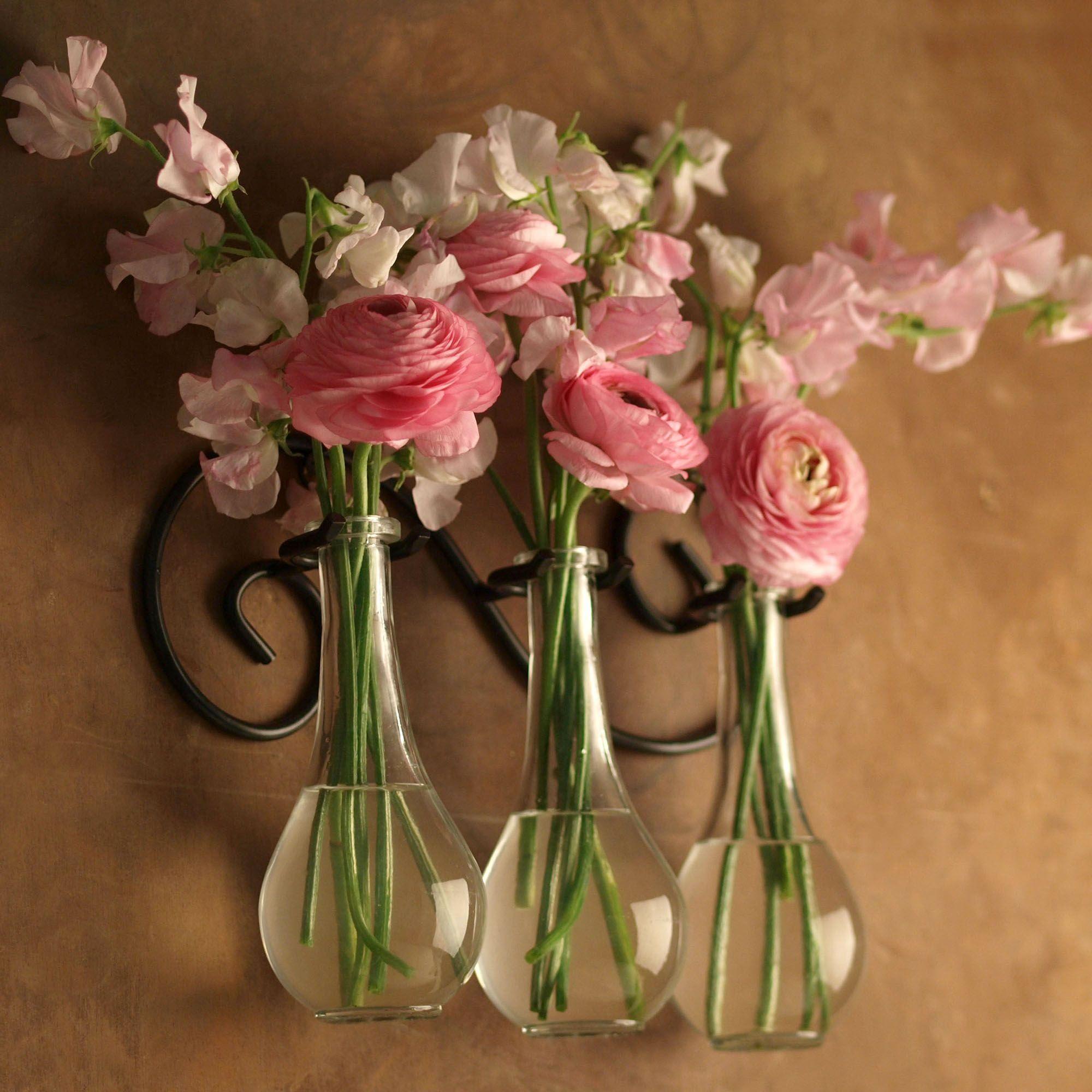 Metal scroll wall hanger with drop bottle glass vases bottle metal scroll wall hanger with drop bottle glass vases floridaeventfo Gallery