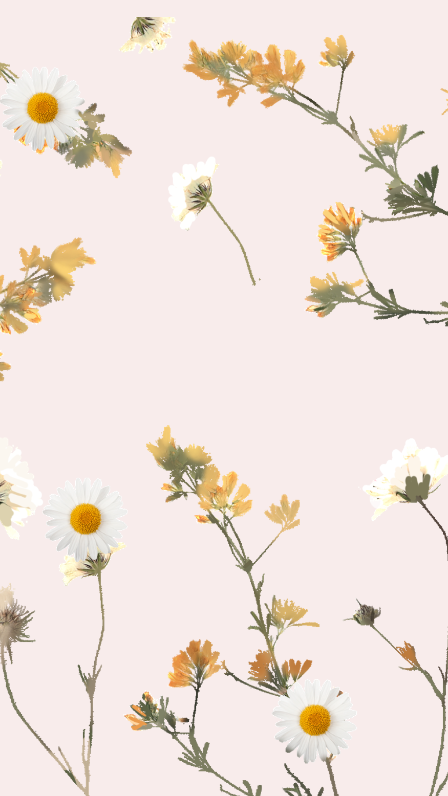 Wallpaper Bem Me Quer by Gocase #lockscreeniphone