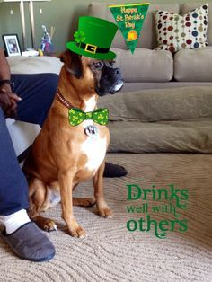 Everyone is Irish on St. Patrick's Day ....