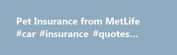 Metlife Insurance Quote Fascinating Metlife Pet Insurance Quote  Best Quote 2017
