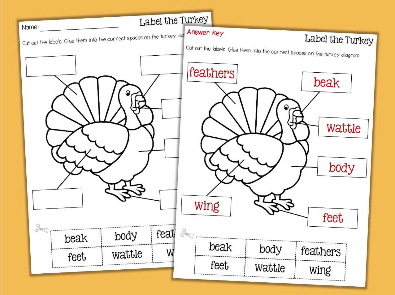 Thanksgiving Reading And Math No Prep Worksheets 1st Grade
