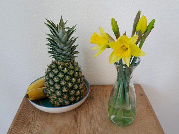 Blühende Narzissen auf dem Küchentisch.