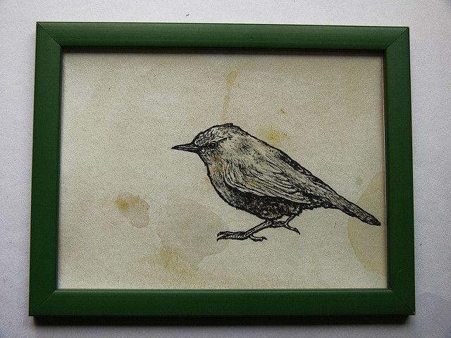 bird   by Patrilozano